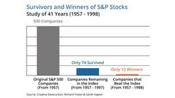 Survivors and Winners of the S&P 500